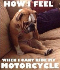 cant ride