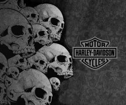 harley-davidson-skull-logo-wallpaper-8
