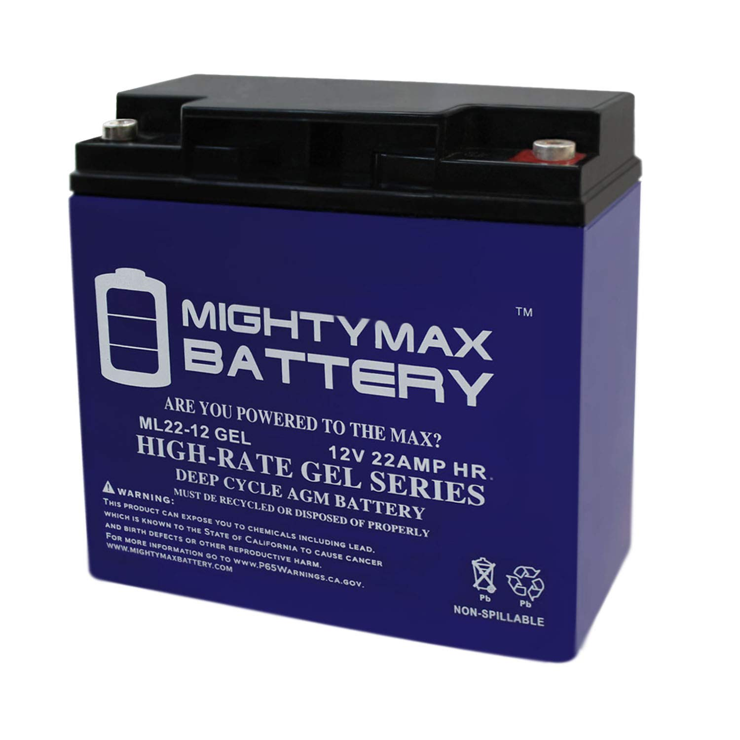 Mighty Max Battery Gel