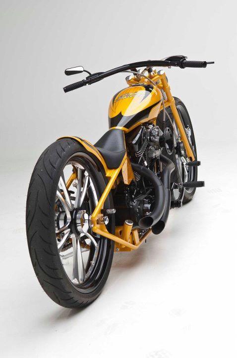 Gold Digger Built By Arlen Ness Of U S A