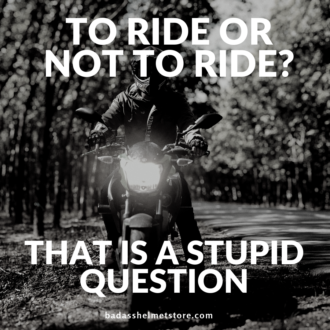 To ride or not to ride? That is a stupid question.