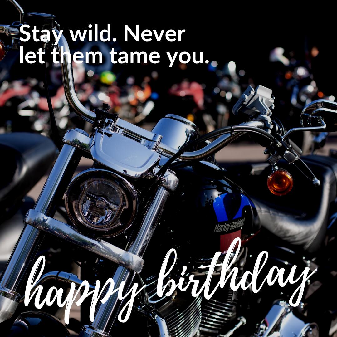 Stay Wild Happy Birthday Message