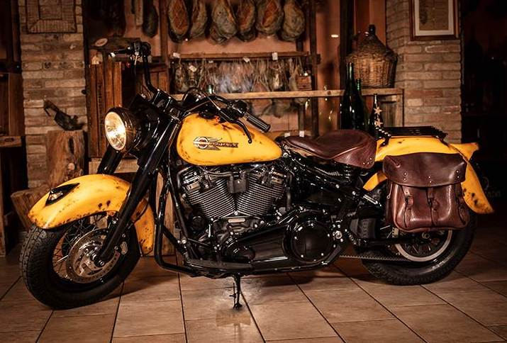 Rusty Sun Softail